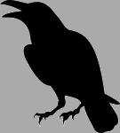 [Fiction] A New Breath on Asora ! BlackRaven